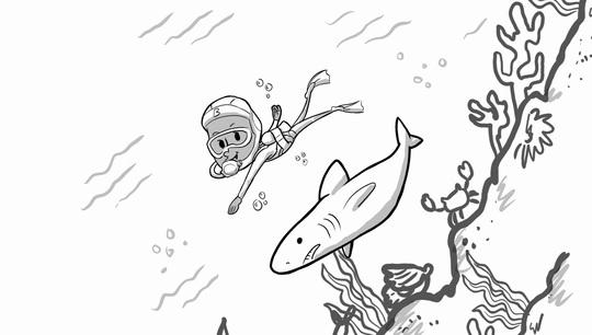 Boldy Experiences Scuba Diving